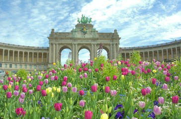 Deurstickers Brussel View Of Multi Colored Tulips In Front Of Triumphal Arch