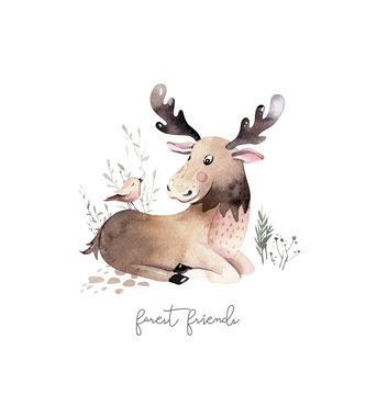 Woodland watercolor cute animals baby Elk. Scandinavian elk forest nursery poster design. Isolated charecter