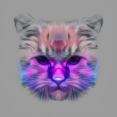 Cat head colorful art illustration