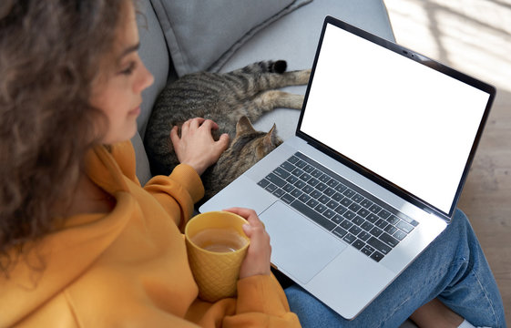 Young hispanic latin teen girl student relax sit on sofa with cat holding laptop looking at mock up white computer screen online learning on pc, elearning, watching movie. Over shoulder closeup view