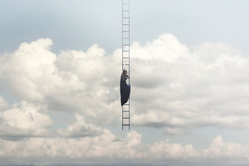 Obraz woman in search of freedom climbs a surreal staircase that descends from the sky - fototapety do salonu