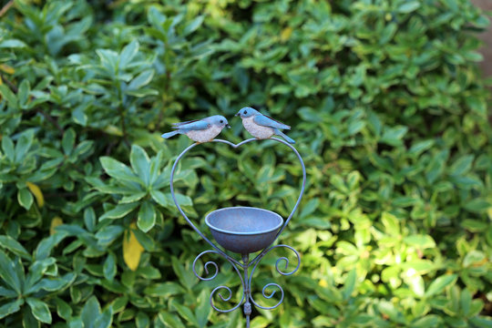 Bird bath with green plant in the background