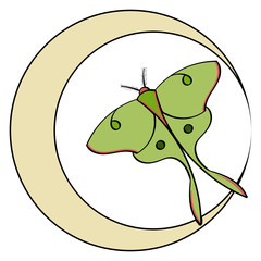 Luna Moth in a Crescent Moon