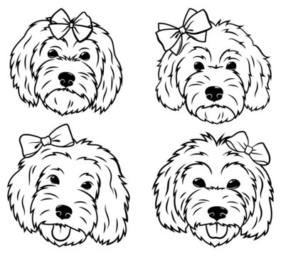 Set of portraits of dogs with a bow. Collection of vector heads of dogs of the breed Goldendoodle. Cute pets. Black and white drawing of domestic animals.