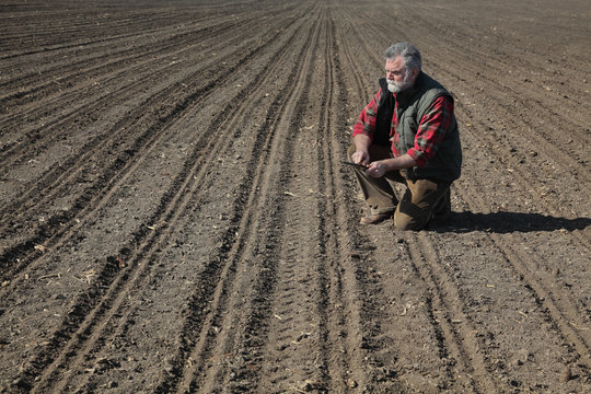 Farmer or agronomist inspecting ground in field in spring after sowing, and typing to  tablet, agricultural works in spring