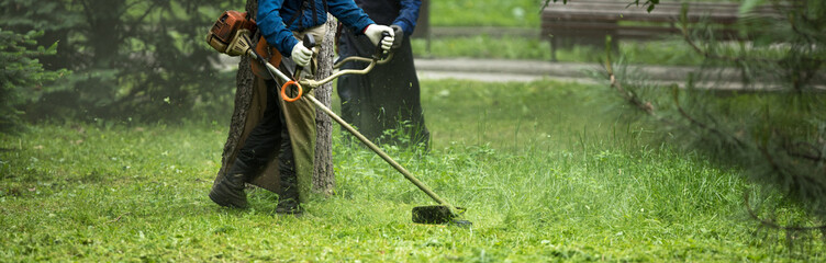 worker mowing lawn with grass trimmer outdoors in garden.