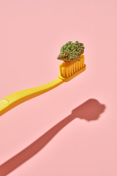 Yellow Toothbrush in Pink Background with Shadow and Cannabis Nug Bud