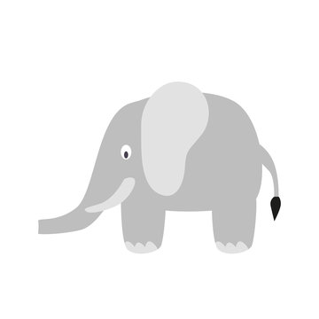 Cartoon elephant isolated on white background. Zoo animals. Illustration for children books. Cute vector illustration in flat style