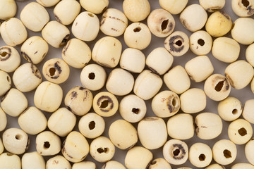 Fototapete - Top view of dried lotus seeds on a table. Nowadays lotus seed become popular healthy food and has highly beneficial for health.