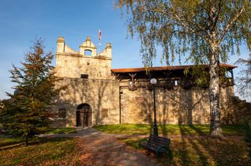 Obraz Ruins of the Royal Castle in Nowy Sacz  - fototapety do salonu