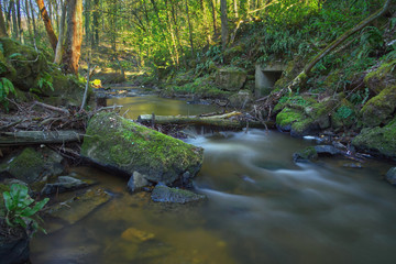 A river Rinderbach in the forest flowing between rocks.