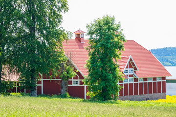 Wall Mural - Beautiful old red wooden barn in the countryside
