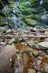 Wall Murals Deep brown Long exposure close up landscape with waterfall and leaves, flowing water
