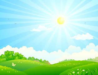 Vector cartoon illustration of green fields and sunny sky