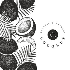Coconut with palm leaves design template. Hand drawn vector food illustration. Engraved style exotic plant. Retro botanical tropical background.