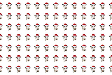 Funny cow isolated in Christmas hat pattern.