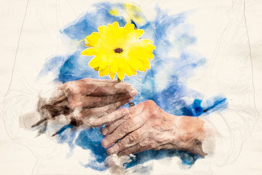 close-up of older womans hand holding a yellow flower in the style of an aquarelle