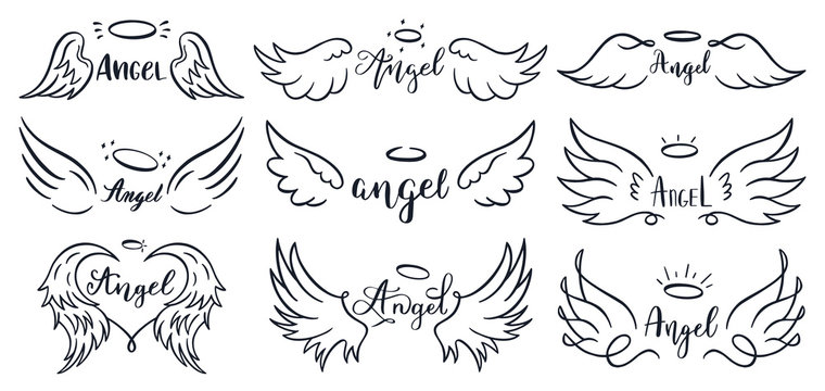 Wings hand drawn lettering. Doodle elegant angel wings phrases, sketched flight feather, winged angel wings and lettering vector illustration set. Sketched lettering, angelic tattoo contour
