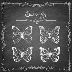 Foto op Aluminium Vlinders in Grunge Set of hand drawn butterflies on the blackboard. Entomological collection of highly detailed hand drawn butterflies. Retro vintage style. Vector illustration.