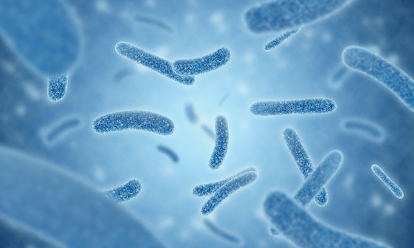 close up of 3d illustration microscopic blue of Legionella pneumophila bacteria is the causative agent of Legionnaires disease and Pontiac fever