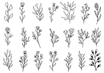 0086 hand drawn flowers doodle