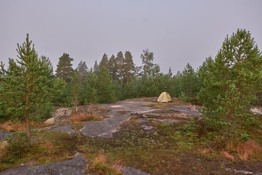 Summer landscape on a foggy morning on the high rocky shore of Lake Ladoga