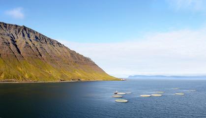 Isafjordur, Iceland. Aerial view of Aquaculture fish farm in Icelandic fjord