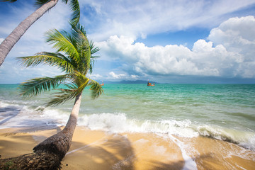 Stormy sea and beach with coconut palm trees. Koh Samui, Thailand