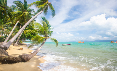 Wall Mural - Stormy sea and beach with coconut palm trees. Koh Samui, Thailand