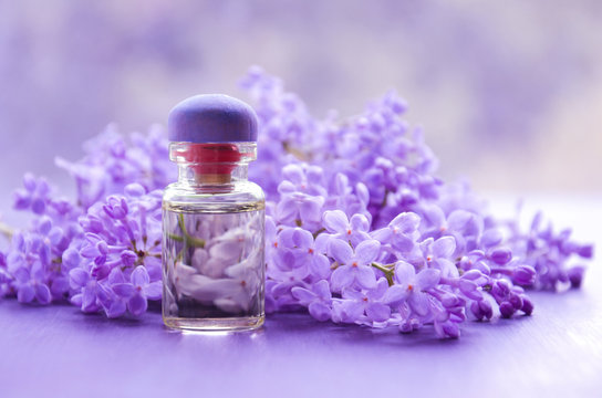 Lilac flowers and essential oil on a lilac background