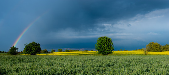 colorful rainbow against the background of a dangerous, stormy sky over a rural landscape-panorama