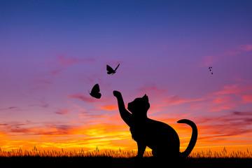 illustration of cat at sunset