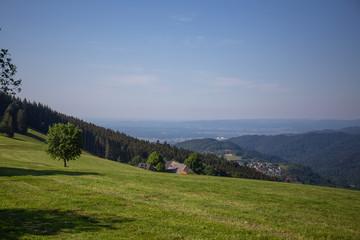 Wall Mural - The View Of Schauinsland From Geiersnest, St. Ulrich, Freiburg