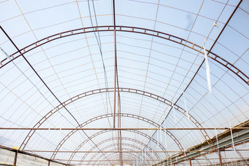 Photo of the roof of a typical production greenhouse and open windows for good ventilation of the greenhouse.