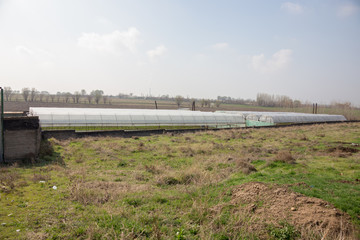 Photo of a typical greenhouse outdoors