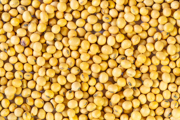 Fototapete - Top view of pile soy beans on the table. Soybean is a kind of legume native to east asia.