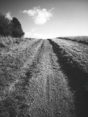 Foto auf Gartenposter Dunkelgrau Dirt Road Along Countryside Landscape