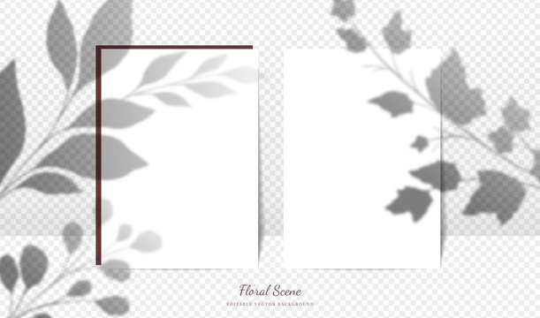 Elegant cards mockup with floral overlay shadows. Editable empty stationery card vector scene with flowers background