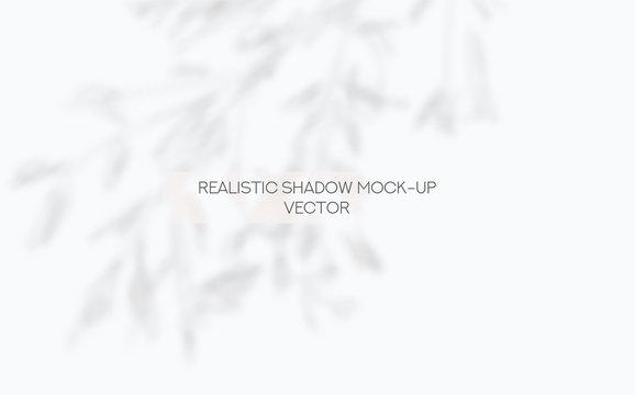 Window and Tree Leaves Shadows Overlay Mockup