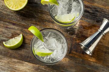 Refreshing Boozy Gin and Tonic