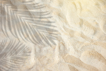 Wall Mural - top view of tropical palm leaf shadow on sand color background. minimal summer concept. flat lay