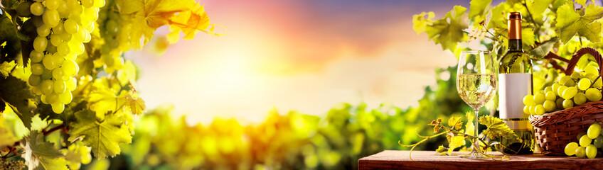 Fototapeten Gelb Grapes and vineyard