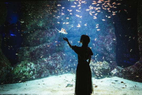 水族館。エイとの遭遇。