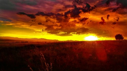 Foto auf AluDibond Rot kubanischen Scenic View Of Grassy Landscape Against Orange Sky