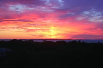 Foto auf Gartenposter Koralle Scenic View Of Silhouette Landscape Against Orange Sky