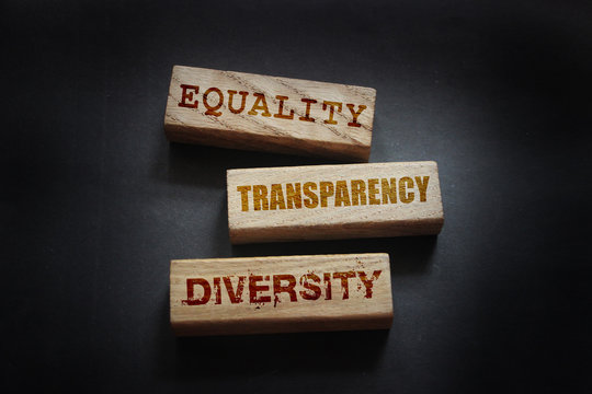 EEquality transparency diversity words written on wooden blocks. Equal rights social concept