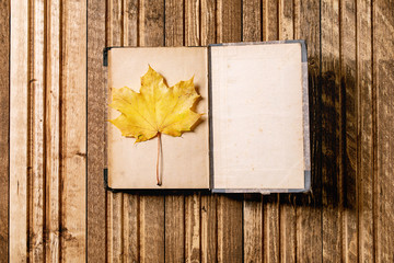 Opened old vintage book and yellow autumn maple leaf over wooden plank background. Flat lay. Fall background.