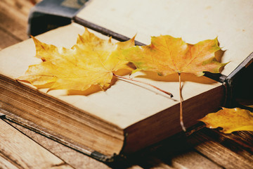 Old vintage books and variety of red and yellow autumn leaves over wooden plank table. Fall background.