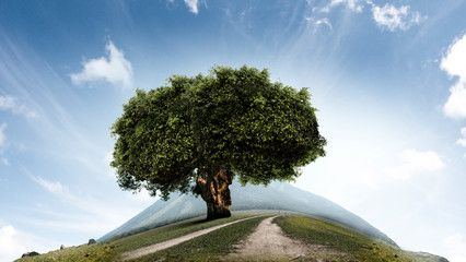 Wall Mural - Image of tree and landscape
