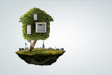 Wall Mural - Little Eco House on the green grass